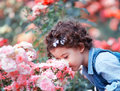 Baby girl smelling pink roses Stock Photos