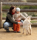 Baby and goat Stock Photography