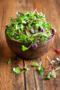 Baby greens in a wooden bowl Royalty Free Stock Photo