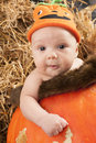 Baby halooween photoshoot month old in a pumpkin during halloween photo shoot Royalty Free Stock Image