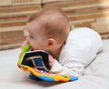Baby and his special toy book explores by taking it in mouth Stock Photo