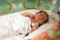 Baby in incubator latin newborn girl sleeping an intensive care unit Royalty Free Stock Photography
