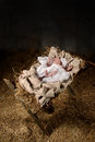 Baby Jesus on a Manger Royalty Free Stock Photo