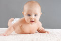 Baby lifting head cute on its belly its looking at camera Stock Image