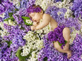 Baby in lilac flowers, newborn child greeting card, small new bo Royalty Free Stock Photo