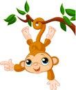 Scimmia su albero mostra
