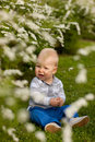 Baby in nature Royalty Free Stock Images