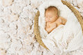 Baby newborn sleeping in art basket on white leaves wrapped woolen blanket Stock Photo