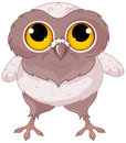 Baby owl illustration of a cartoon Royalty Free Stock Photos