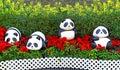 Baby panda figurines Royalty Free Stock Photo