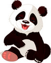Baby Panda laughing Royalty Free Stock Photo