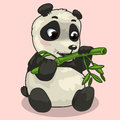 Baby Panda with sprig of bamboo on pink background