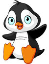 Baby penguin cartoon illustration of cute Royalty Free Stock Image