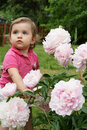 Baby and peonies Stock Image