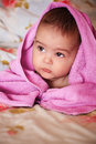 Baby pink Stock Photography