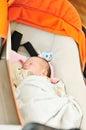 Baby in pram newborn is sleeping the Stock Photography