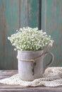 Baby`s breath gypsophilia paniculata in grey ceramic vase Royalty Free Stock Photo