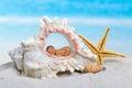 Baby in seashell