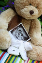 Baby shoes and teddy bear and baby ultrasound Royalty Free Stock Photo