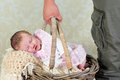 Baby in shopping basket Royalty Free Stock Images