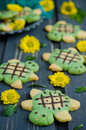 Baby shortbread biscuits with the tea match in the form of turtles Stock Image