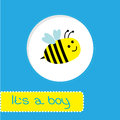Baby shower card with bee it s a boy vector illustration Royalty Free Stock Images