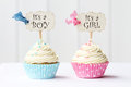 Baby shower cupcakes for a girl and boy Royalty Free Stock Images