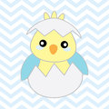 Baby shower illustration with cute blue baby chick on chevron background Royalty Free Stock Photo