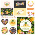 Baby Shower Tropical Theme Design Elements Royalty Free Stock Photo