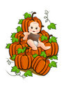 Baby sit on a stack of pumpkins Royalty Free Stock Photo