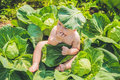 A baby sitting among the cabbage. Children are found in cabbage Royalty Free Stock Photo