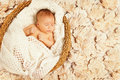 Baby sleep autumn leaves new born kid newborn asleep in on decorated background one month old Royalty Free Stock Image