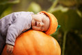 Baby sleeping on big pumpkin Stock Image