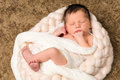 Baby in soft braid seven days old newborn lying a wool Royalty Free Stock Photo
