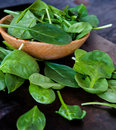 Baby spinach close up of leaves in a bowl Royalty Free Stock Photos