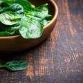 Baby spinach leaves in a bowl on dark background Royalty Free Stock Photo