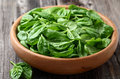 Baby spinach in a wooden plate Stock Photography
