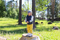 Baby standing on stub in forest happy age of months Stock Photography