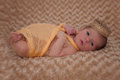 Baby wrapped in muslin with crown newborn Royalty Free Stock Photos