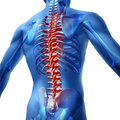 Back Pain In Human Body Stock Photo