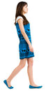 Back side view of going young brunette girl Royalty Free Stock Photo