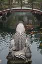 Back of a stone carve of koi carps in pond Royalty Free Stock Photo