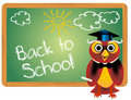Back to school  background Stock Image