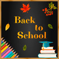 Back to school background chalkboard, autumn leaves, pencils, graduate cap, books and text