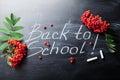 Back to school background on chalkboard decorated rowan berry.
