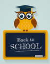 Back to school. Card with owl and blackboard. Vector illustratio