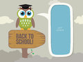 Back to school a cartoon cute owl illustration of concept Stock Photo