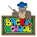 Back to school sign with owl lector Stock Photography