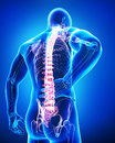 Back view of anatomy of male back pain in blue Royalty Free Stock Photos