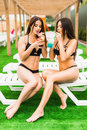 Back view beautiful sexy women in bikini drinking a cocktails while relaxing in the swimming pool. summer time Royalty Free Stock Photo